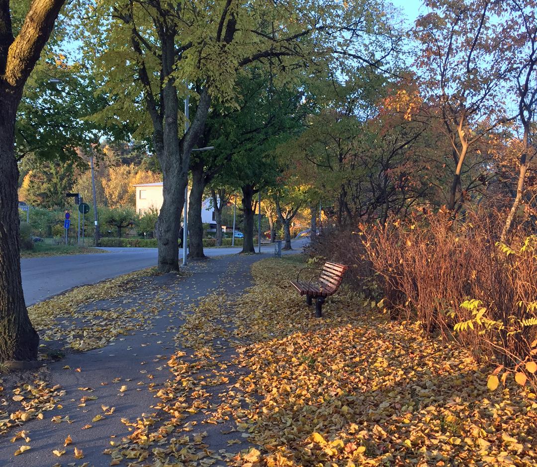 Hösten är kommen hos Dareotbeyou