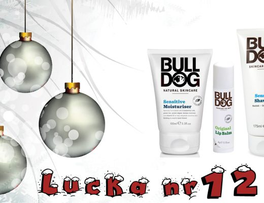 Adventskalender 2016 Lucka 12 – BullDog