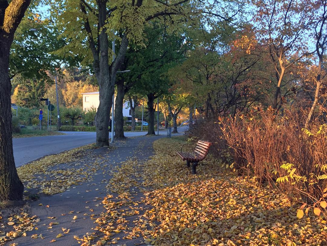 Hösten är faktiskt min energi